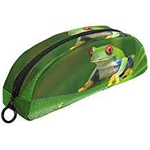 estuche de rana verde