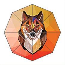 paraguas de lobo