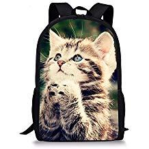 mochila de gato